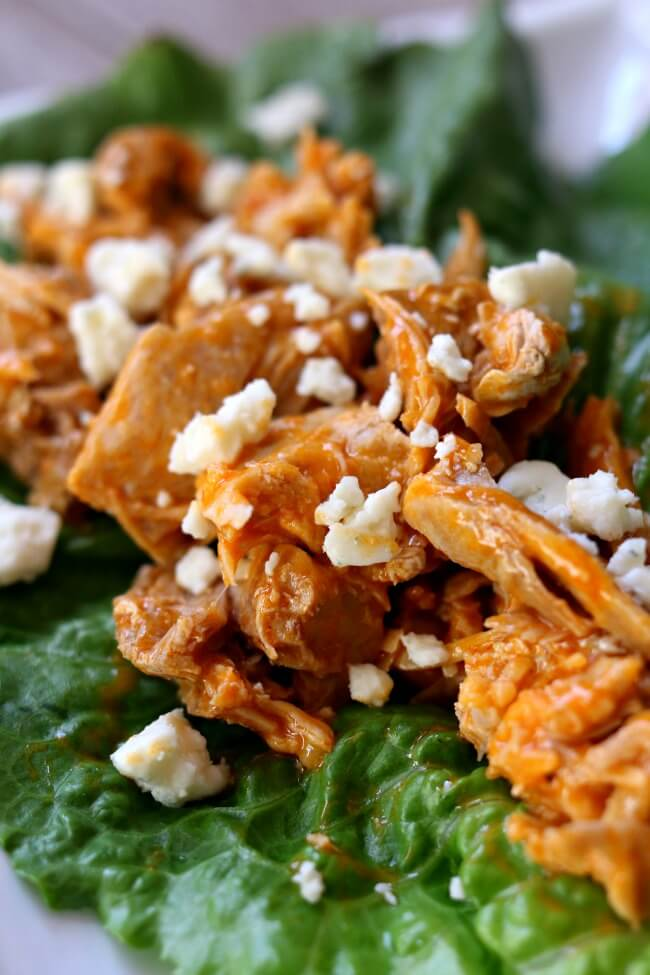 Instant Pot Buffalo Chicken Lettuce Wraps--shredded chicken coated with buffalo sauce and topped with blue cheese crumbles is wrapped up in crisp lettuce leaves. You can make these flavorful lettuce wraps with just 4 ingredients and a few minutes in your electric pressure cooker.