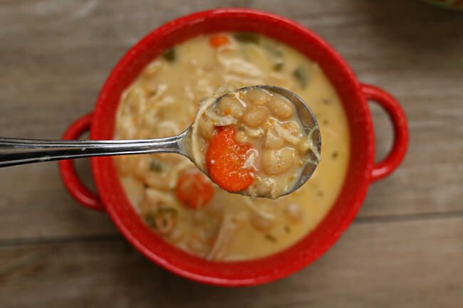 Instant Pot Chicken and White Bean Soup--dried navy beans are quickly pressure cooked with onion, garlic, spices, carrots, celery and chicken (or you can use turkey). You can make it creamy or dairy free (it's up to you). For cold nights this soup is a 10 out of 10!