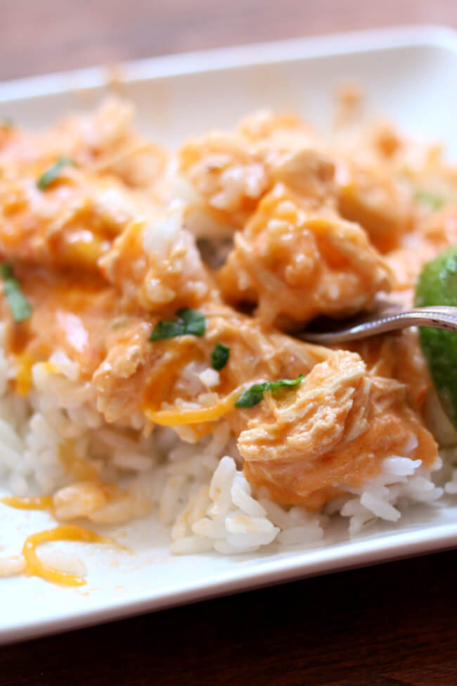 Instant Pot Creamy Salsa Chicken--tender bites of chicken with an amazing sauce of just 3 ingredients: salsa, lime juice, and sour cream. This chicken and sauce tastes great over rice or rolled up in a tortilla. Plus it's so fast and easy to make, you can even use frozen chicken.